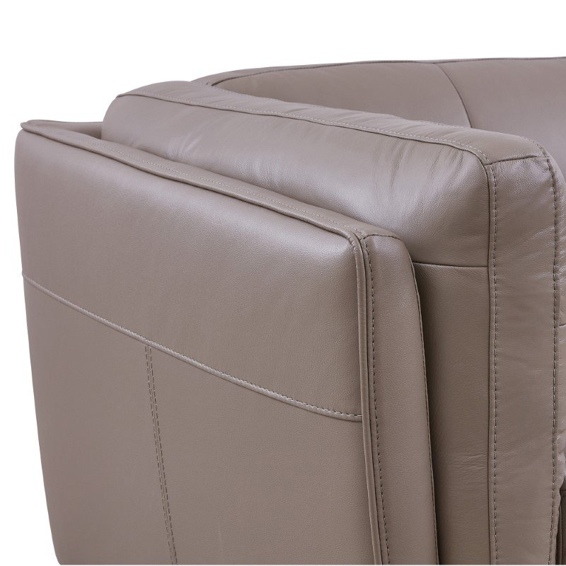 Armen Living Primrose Contemporary Chair in Dark Metal Finish and Greige Genuine Leather (LCPR1GR)