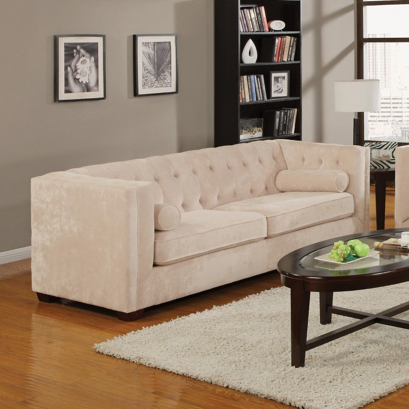 Coaster Alexis Transitional Microvelvet Chesterfield Sofa in Almond