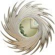 Coaster Round Spiral Accent Mirror