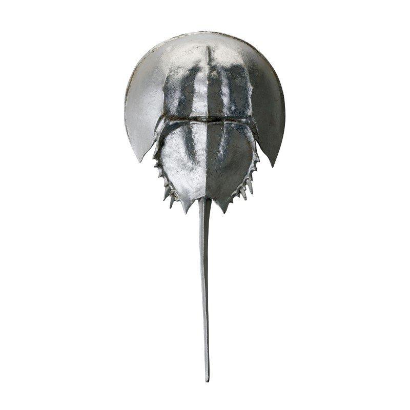 Dimond Home Silver Mica Horseshoe Crab (228005)