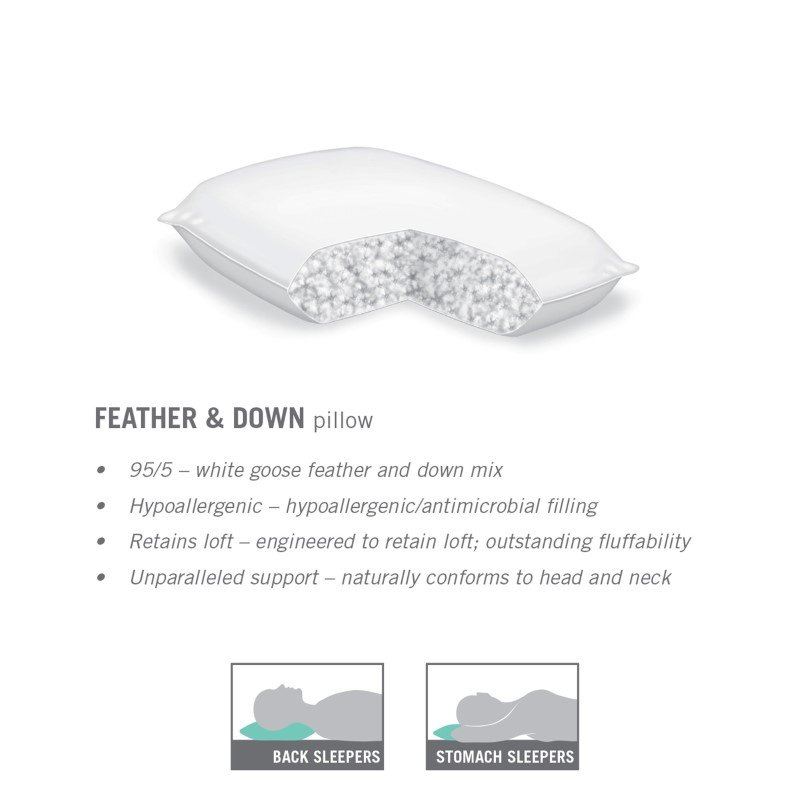 Fashion Bed Group Sleep Plush Feather and Down Pillow - King/California King