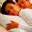 Fashion Bed Group Sleep Plush Feather and Down Pillow - Standard/Queen