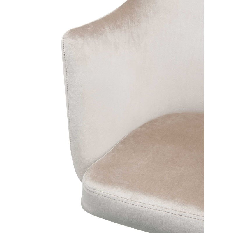 HomeRoots Furniture Office Chair in Champagne Velvet - Metal Tube, Foam, Fabric (319077)