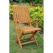 International Caravan Royal Tahiti 2-Piece Outdoor Folding Arm Chairs in Brown Stain