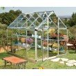Palram Snap & Grow 6' x 8' Hobby Greenhouse in Silver