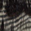 "Plutus Brands Porcupine Dark Brown and Beige Faux Fur Luxury Throw 60""W x 90""L (PBEZ1783-6090-TC)"