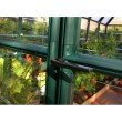 Rion EcoGrow 2 Twin Wall 6' x 10' Greenhouse