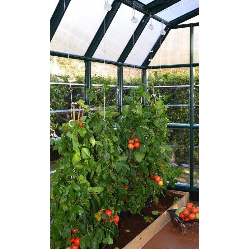 Rion Prestige 2 Clear 8' x 16' Greenhouse in Dark Green (HG7316C)