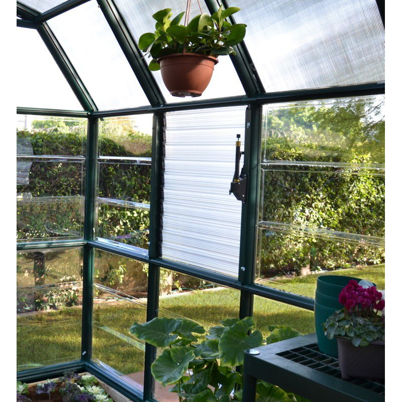 Rion Prestige 2 Clear 8' x 20' Greenhouse in Dark Green (HG7320C)