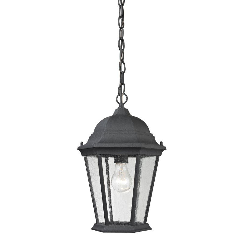 Thomas Lighting Temple Hill Hanging in Matte Textured Black (8101EH/65)
