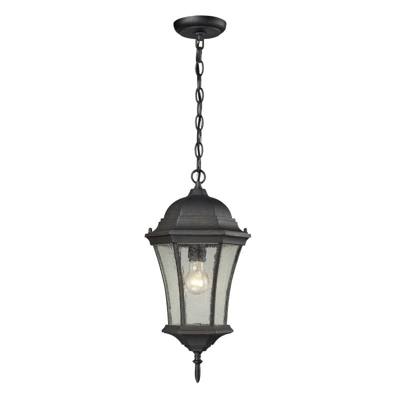 Thomas Lighting Wellington Park 1 Light Exterior Hanging Lamp in Weathered Charcoal (7301EH/71)